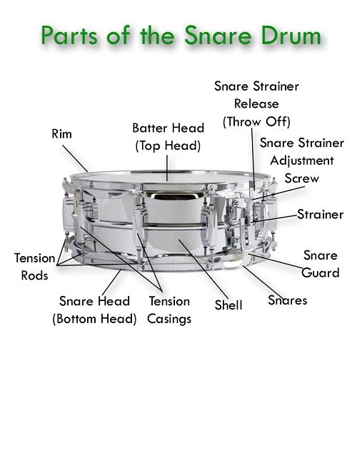 snare drum diagram library of wiring diagram u2022 rh jessascott co Labeled Diagram of a Bass Drum Snare Drum Components