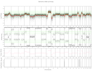 Summary graphic output