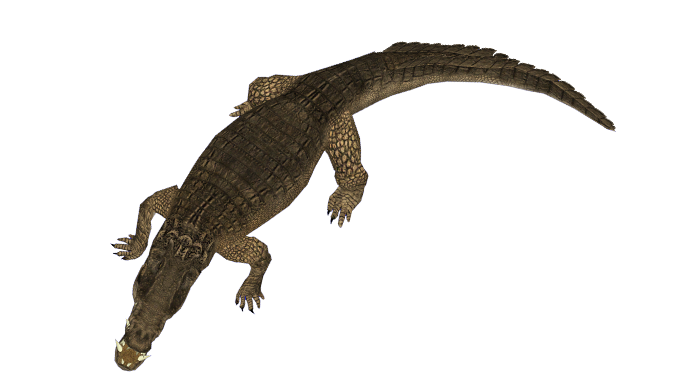 https://sites.google.com/site/onepiecedesignszt2/home/projects-downloads/animals/kaprosuchus.png