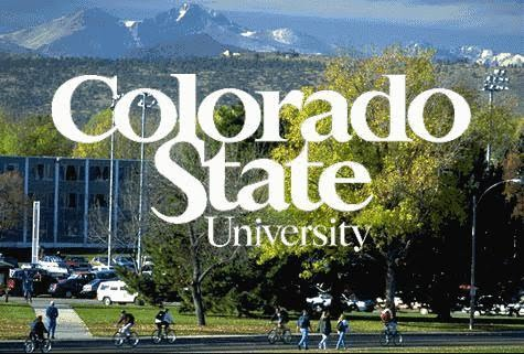 Image result for Colorado State University