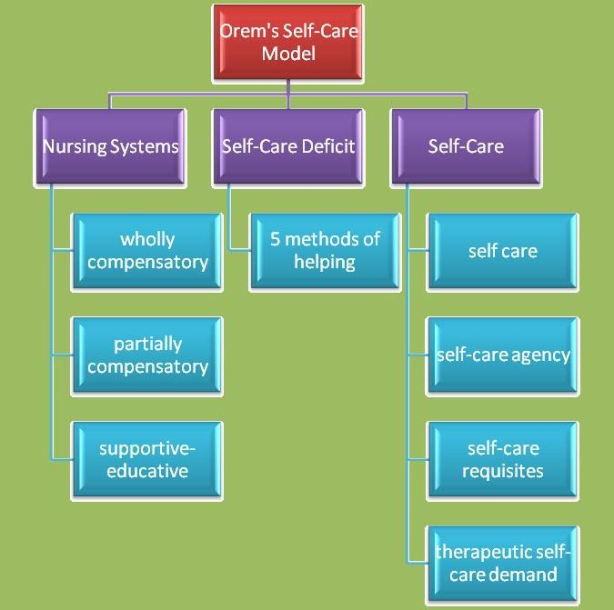 Henderson and orem comparison of nursing concept