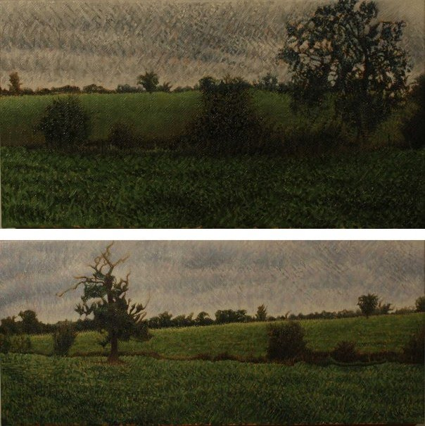 2 realistic landscape paintings of green fields, bushes, and trees