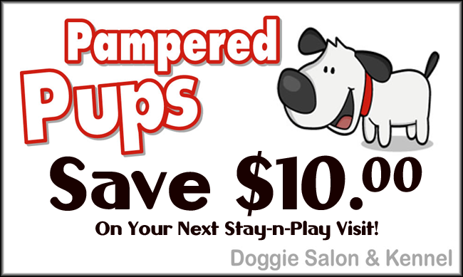 Businesses in Related Categories to Dog & Cat Grooming & Supplies