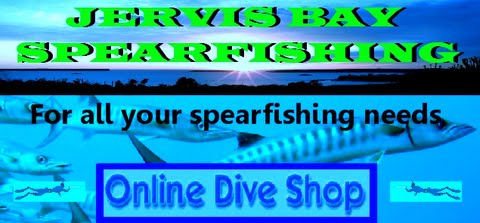jervis bay spearfishing