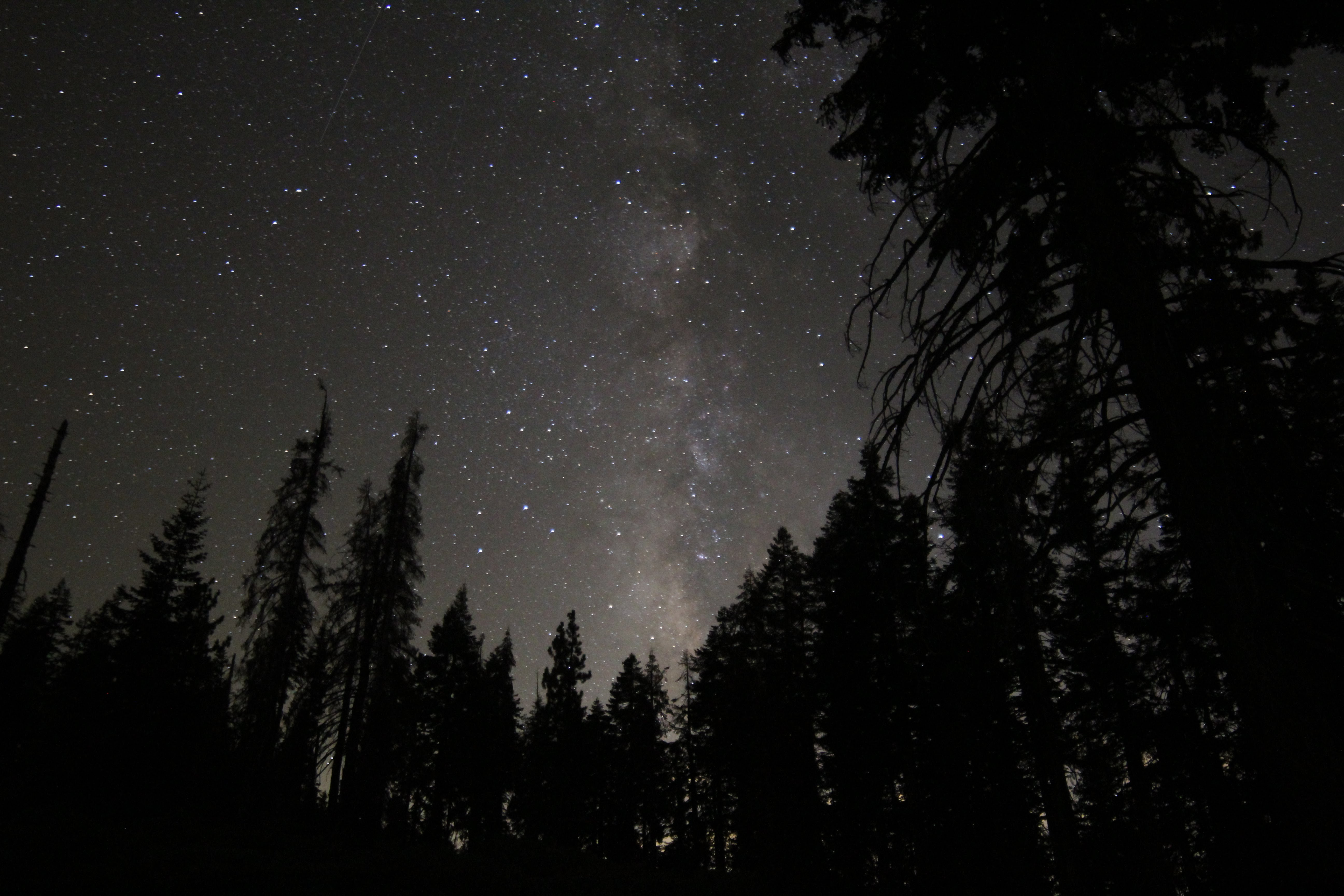 Milky Way in Kings Canyon