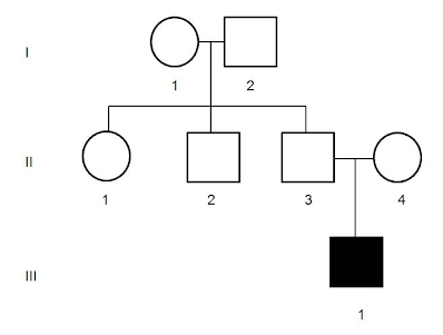 A Guide To Pedigree Charts