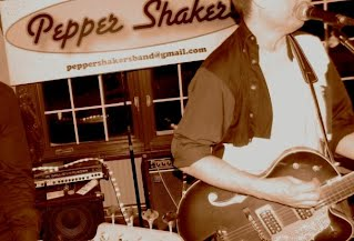 the pepper shakers are the toronto party band for hire