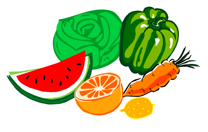 de origen vegetal y animal clasificación de alimentos cocinando