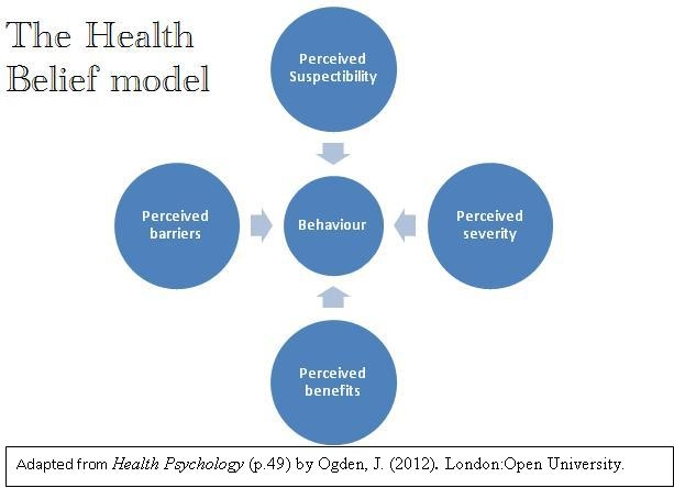 Icf And Other Shared Models 100323844 Michaela Petersen Ot Process