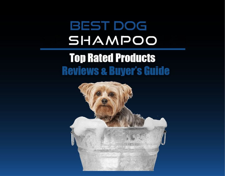 https://petsaw.com/order-best-shampoo-for-dogs/