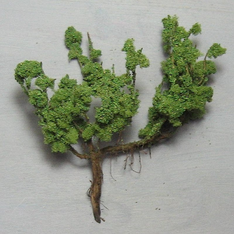 Diorama Making Trees Bushes And Tuffs Of Grass Phersuminiatures