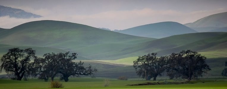 Livermore Hills on a Foggy May Day