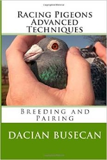 http://www.amazon.com/Racing-Pigeons-Advanced-Techniques-Breeding/dp/1502444364/ref=sr_1_28?ie=UTF8&qid=1412791390&sr=8-28&keywords=racing+pigeons+books