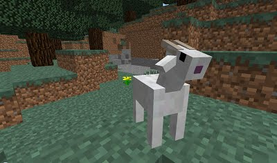 Goatjpgheightampwidth