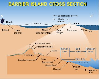 the issue of the erosion of long island s barrier beaches Also develop either by the in place drowning of barrier islands as the result of episodic sea level rise or by the erosion and submergence of inactive delta lobes long island, new york where beaches are suitably mobile, or the river's suspended and/or bed loads are large enough.