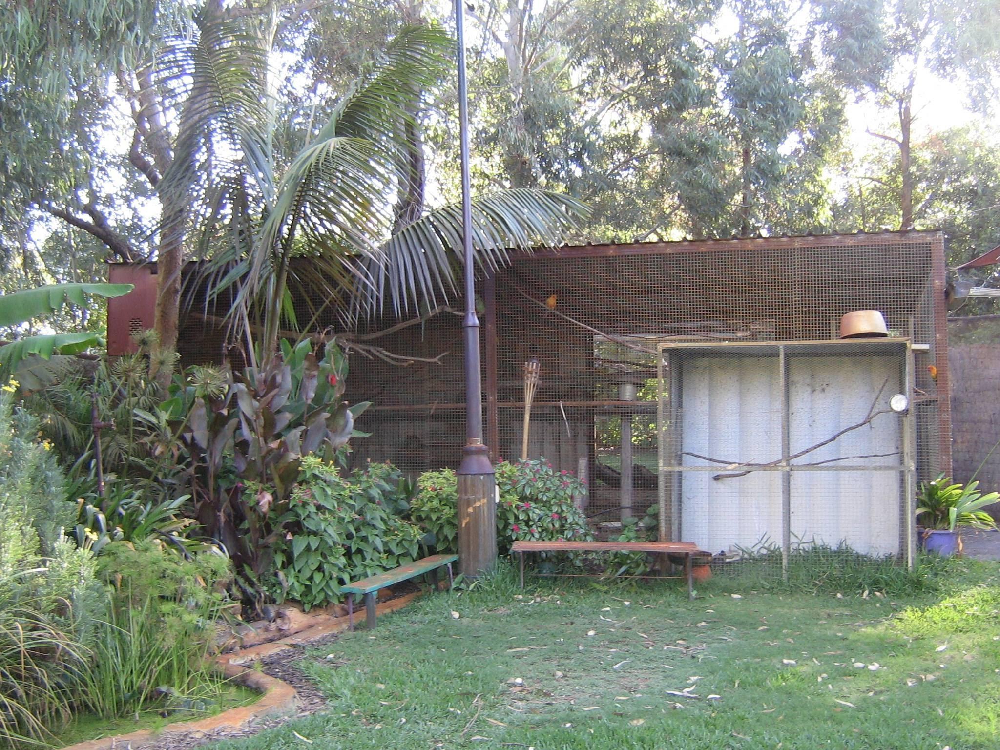 aviaries - polytelisstud