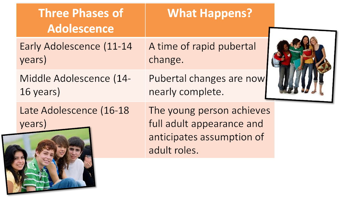 changes from adolescence 1 development of breasts between the ages of 8-13 years, girls start developing breasts morphologically (that is in terms of form and shape), breasts look like a cone with the base at the chest wall and the apex at the nipple.