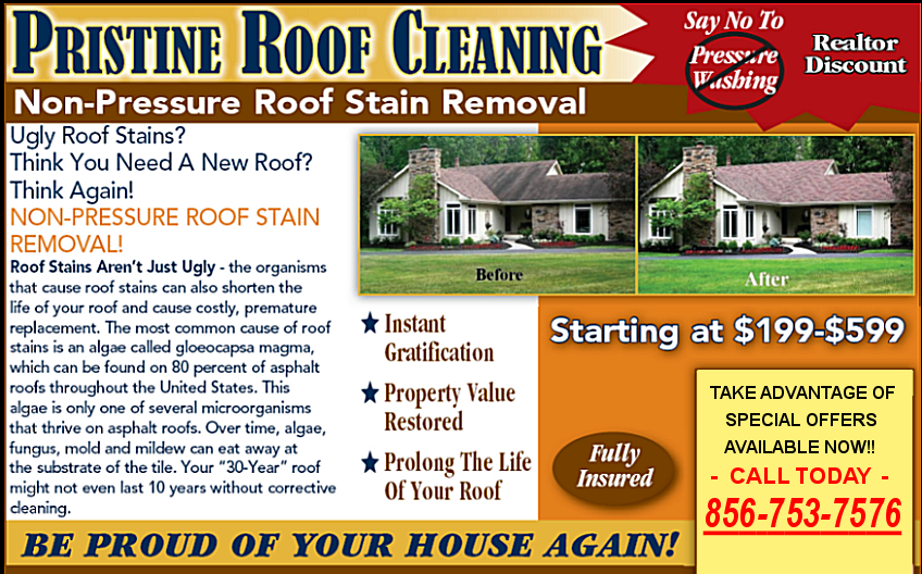 Pristine Roof Cleaning