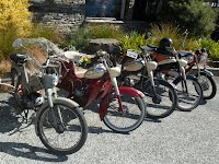 Puchs rule at Wanaka!