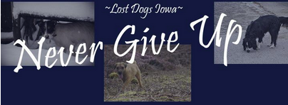 Lost Dogs of Iowa