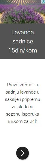 https://sites.google.com/site/rasadnikgojkovic/home/Lavanda.JPG