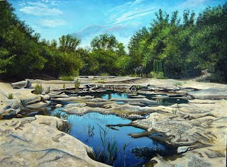 """""""Barton Creek Greenbelt, about a mile down the creek from the pool"""""""