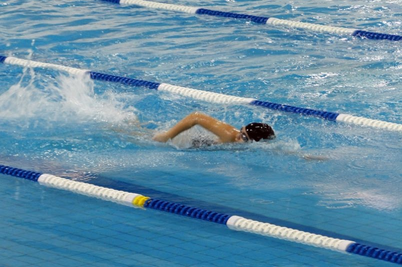 Image Gallery Olympic Games Swimming