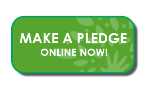https://sites.google.com/site/rlcgiving/home/grow-to-give-online-pledge-button.png