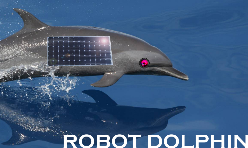 robot dolphin. Black Bedroom Furniture Sets. Home Design Ideas