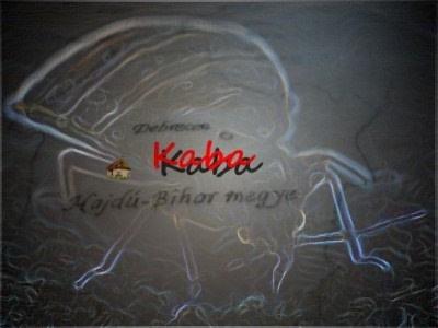 Kaba Ágyi poloskairtás