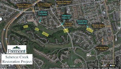 Sabercat Creek Restoration Project Sites