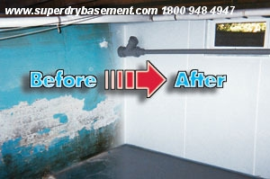 Diy all natural mold removal safe atticcrawlspacebasement mold enter to win free attic crawlspace mold removal for your home solutioingenieria Images