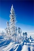 زمستان، آموزش، زبان ،انگلیسی