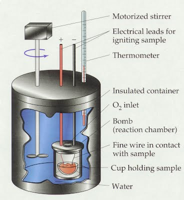 energy of nuts a calorimetry Calorimetry: determining the energy in a nut in this lab, you will use two methods to find the amount of energy stored in a nut in one, using a bomb calorimeter.