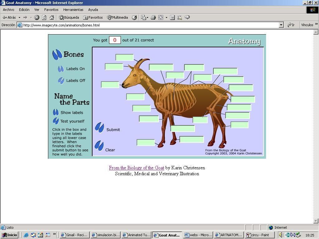 fisiología4 - simulacionbiologia