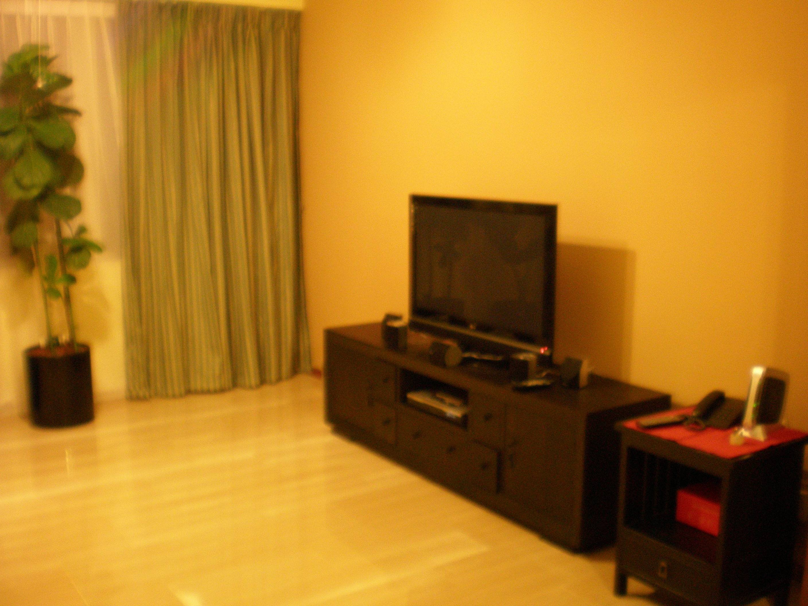 Singaporerentals for Living room with 65 inch tv