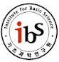 IBS Korea homepage