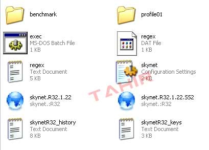 skynet r32 1.22 windows