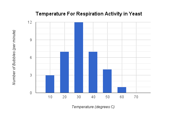 does the respiration rate of yeast Why does saccharomyces cerevisiae prefer anaerobic respiration (fermentation)  lag period if it does so by respiration than it if does so  is respiration rate.