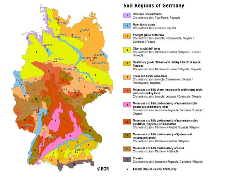 Soil information soils of germany for Soil pictures and information