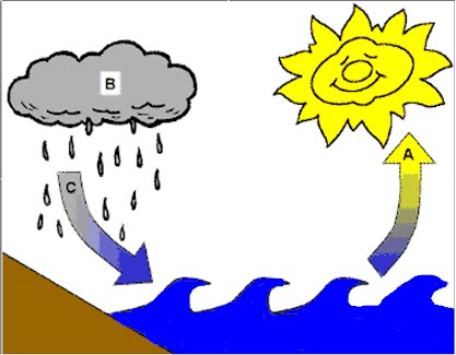 Written Water Cycle Assessment Water Cycles
