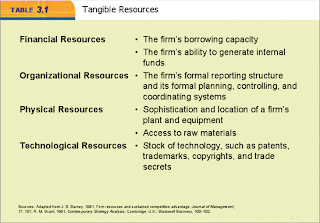 resources and capabilities of google