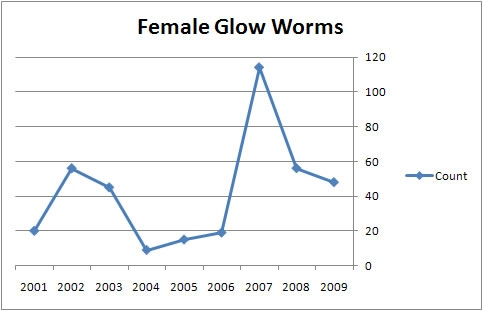 Chart of glow worm numbers