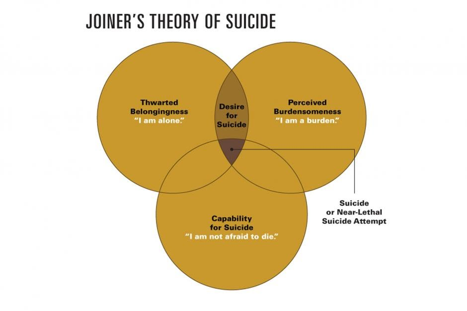 theories about suicide