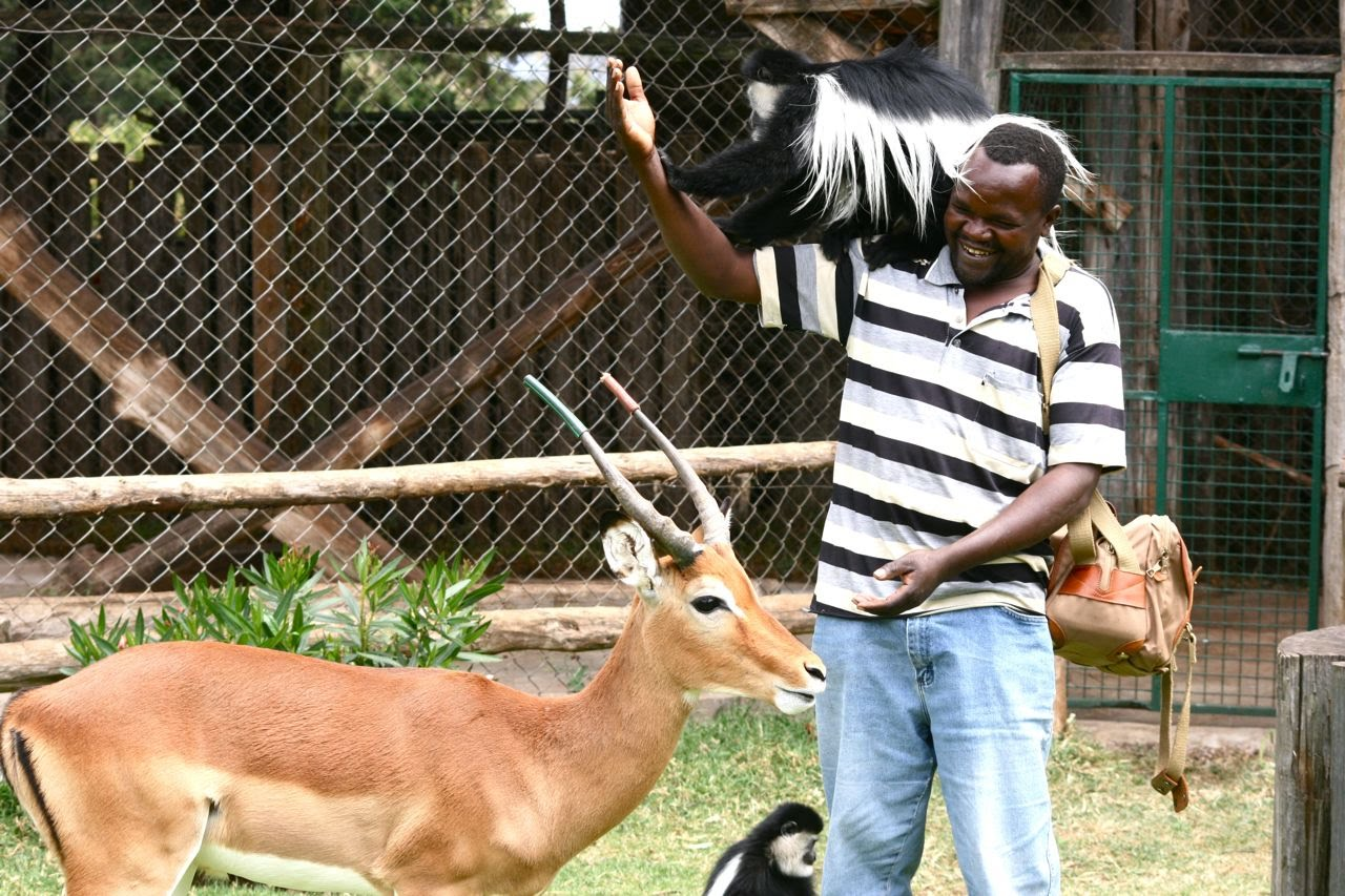 Mount Kenya Safari Club - Animal Orphanage