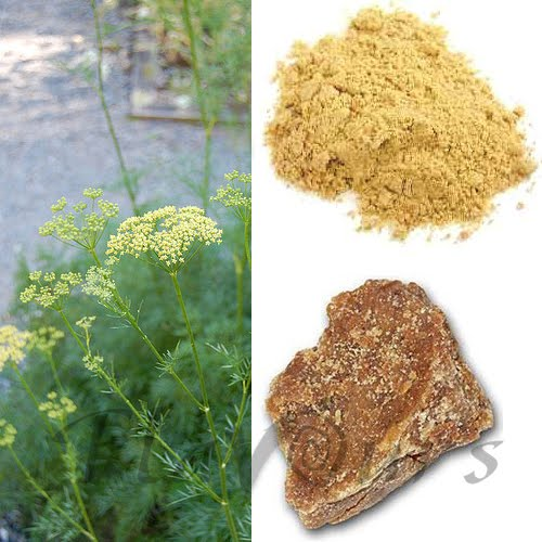 Little known Home remedies | The treasure house of recipes ...