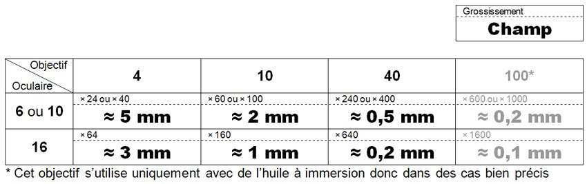 calculer le grossissement d un microscope