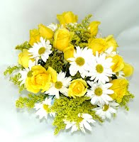 Daisy and Roses