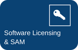 Software Licensing and SAM