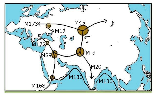 genetic map of the world Origin of Megalithic Farmers) M 172 gene   tamil etymology